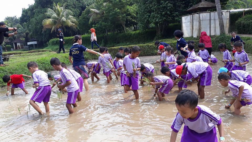 Anak-anak MBB Sungai Tiram Belajar Di Taman Mekar Sari Bogor